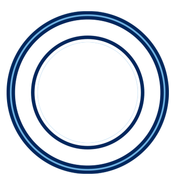Anillo100